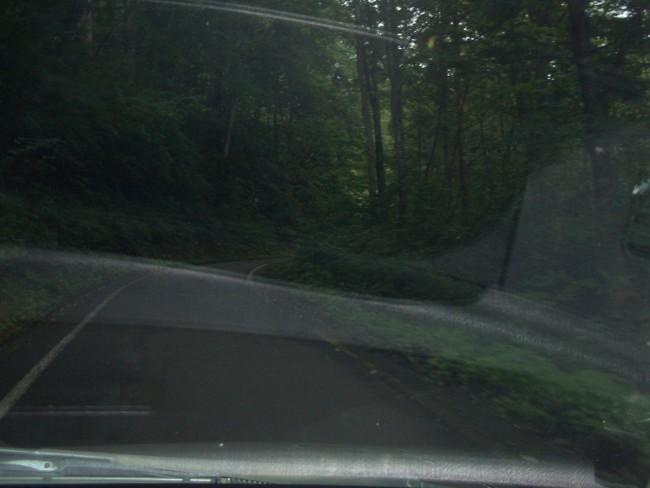 蓮華温泉に向かう山道