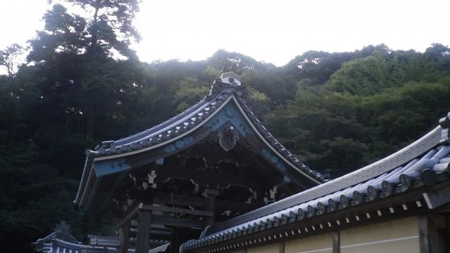 瀧安寺:http://midokoro.minoh.net/ryuuannji/