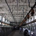 世界遺産の「富岡製紙場」がある富岡で、歴史を感じてみませんか?