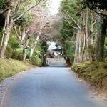 隠れた名勝庭園が点在する比叡山麓を一人散策