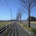 歴史ファン垂涎の観光スポットが目白押し 古代栃木県の県庁所在地・下野市と小山市を歩く