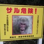 紅葉とお猿を探して初秋の山へ 大阪箕面・週末ことりっぷ 後篇