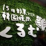 【新大久保】野菜をモリモリ食べられるサムギョプサル発見!15種の野菜でくるんで食べる、絶品韓国焼き肉!