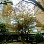 都庁とハイアットリージェンシー東京