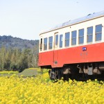 ノスタルジックな一両列車「小湊鐡道」でぶらりローカル線の旅をしてみませんか