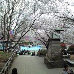 江戸時代からの桜の名所・飛鳥山公園と鉄道ファン必見の北とぴあ展望ロビー 東京都北区を歩く