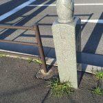 竹の子ごはんや竹の子最中も!京都の長岡京でたけのこ三昧を楽しもう!