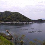丹後半島を効率よく周遊!天橋立と舟屋の町・伊根を結ぶ「伊根航路」