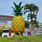 パイナップルが無料で食べ放題!那覇空港からたった3分「パイナップルハウス」