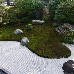 リレー徘徊41:妙心寺の2つの庭