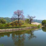 自然に囲まれた古墳で歴史散策!大阪・八尾市の心合寺山古墳
